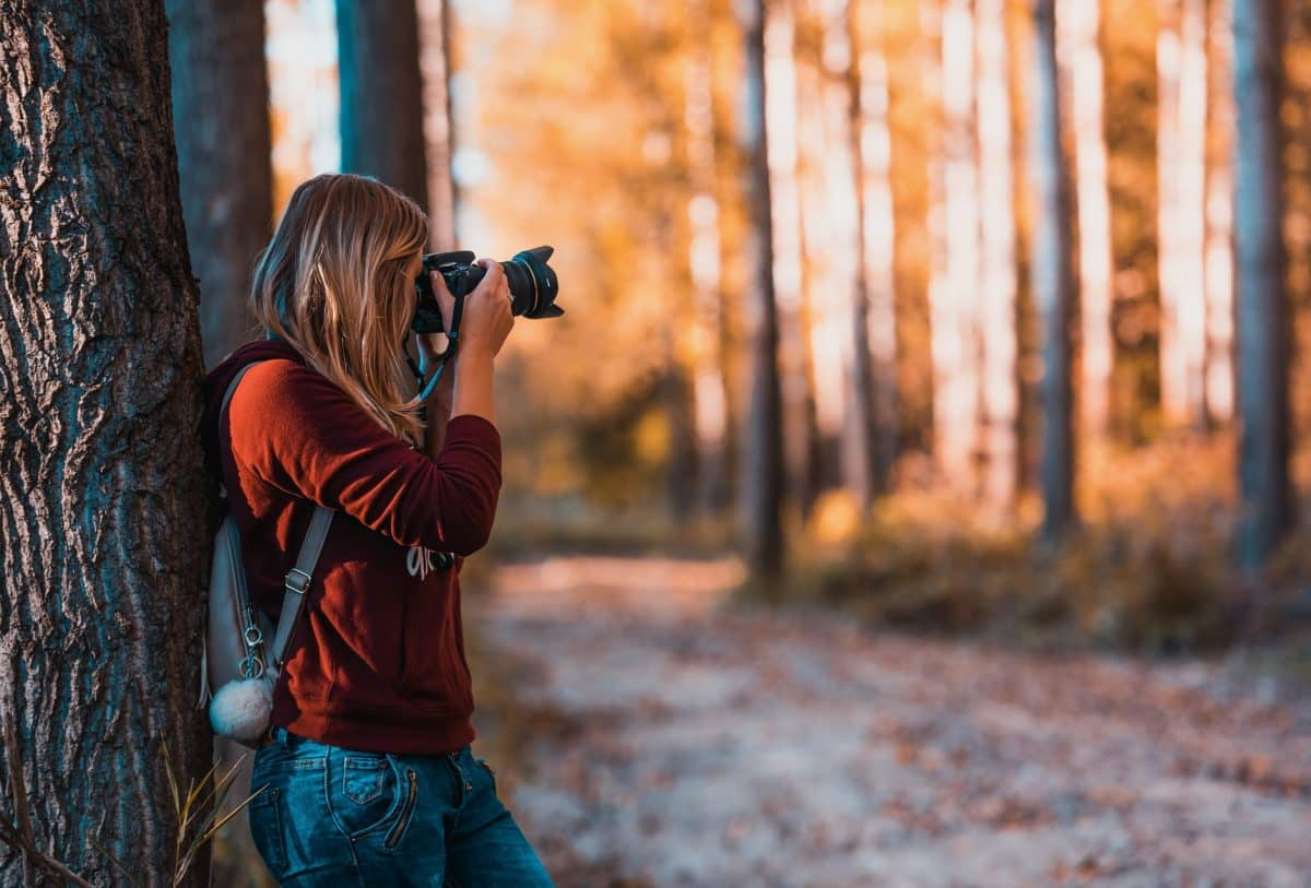 Tips To Transform Yourself From Amateur To Professional Photographer